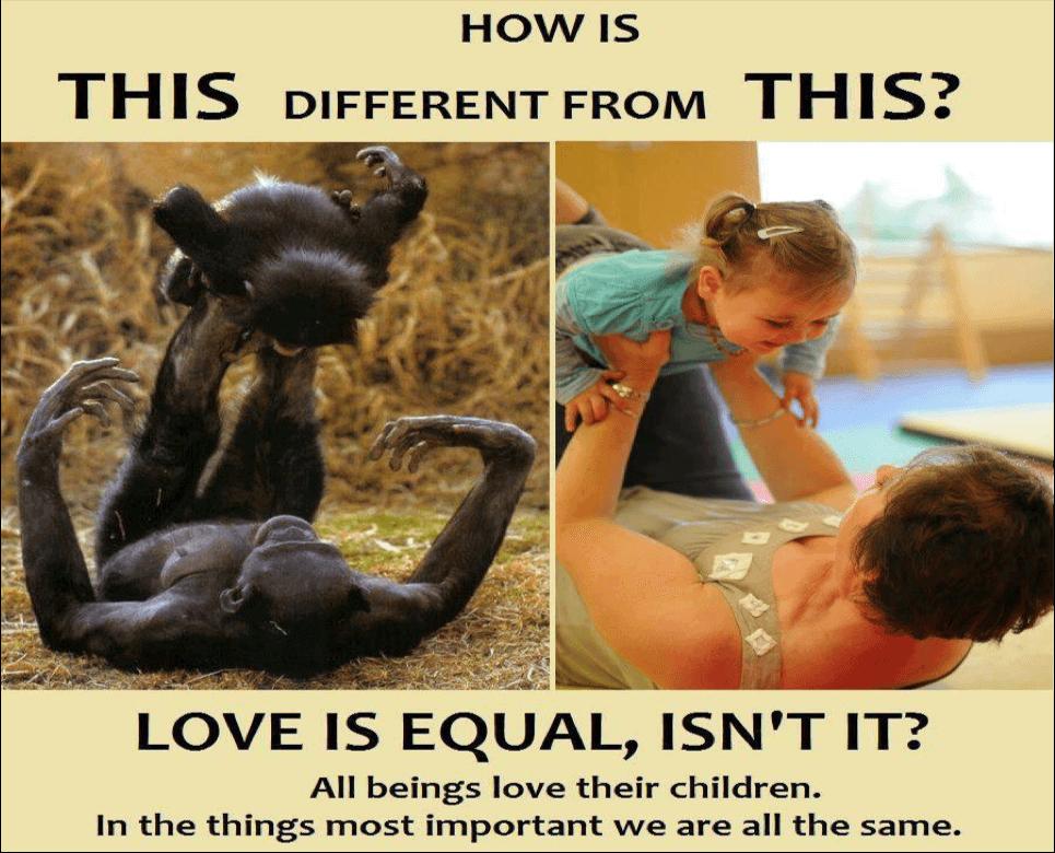 Love-parents
